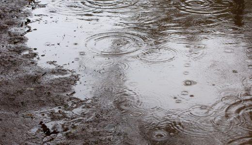 雨の日の畑は非効率