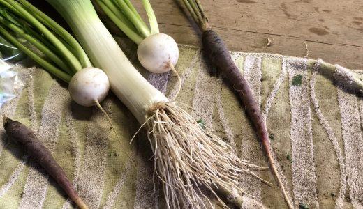 土付き野菜